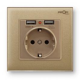 Розетка з заземленням та 2 USB ProfiTherm Singl Pure Gold