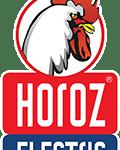 Логотип вертикальний Horoz