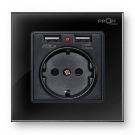 Розетка з заземленням та 2 USB ProfiTherm Singl Elegant Black
